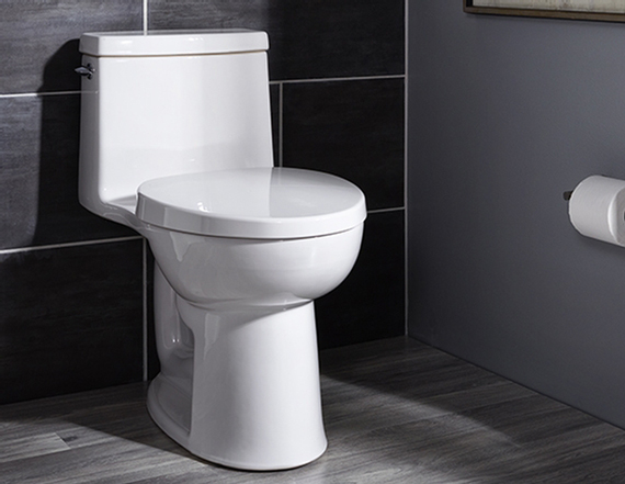 depannage wc toilette val d oise 95 t l. Black Bedroom Furniture Sets. Home Design Ideas